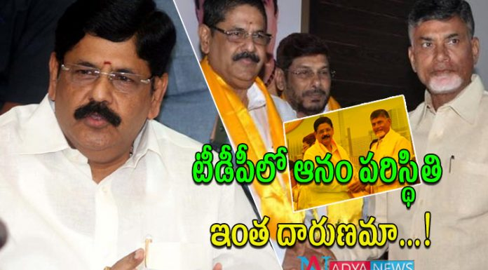 Anam Ramanarayana Reddy Serious Comments on TDP and Chandrababu
