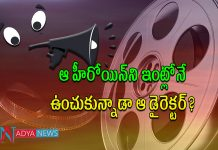 Tollywood Director Divorce Issue