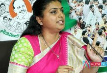 After next election, Jagan will be the Chief Minister: Says MLA Roja