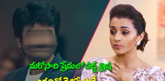 Rumors halchal in heroine trisha marriage