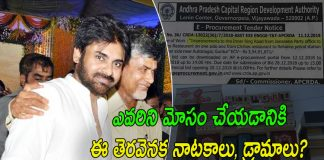 Political Strategies : Chandrababu Vs Pawan Kalyan