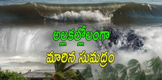 Paithan Cyclone effect to Andhra Pradesh