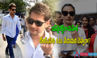 Mahesh babu indirect support to trs party in elections