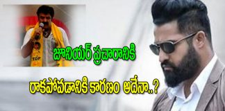 TDP MLA Nandamuri Balakrishna Comments on Jr NTR Electio Compagin From TDP in Telangana election
