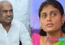 TDP MP JC Diwakar Reddy Interesting comments on YS Sharmila