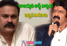Mega brother nagababu once again fire on balakrishna