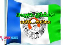 Venkatagiri Constituency Compete between the two leaders in YSRCP