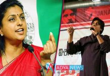 YSRCP MLA Roja sensational comments on YCP with janasena alliance