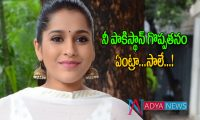 Anchor Rashmi Gautam Fire on pak and Netizen
