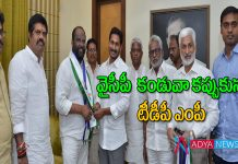 Amalapuram TDP MP Pandula Ravindra babu joined in ysrcp