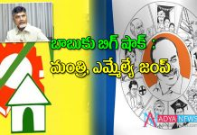 TDP Minister and MLA Ready to Jump in YSRCP