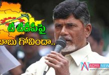 Chandra Babu given shock to T TDP leaders in contesting Lokesabha elections in Telangana
