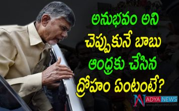 Special Story on Chandrababu 40 Years of Political Experience