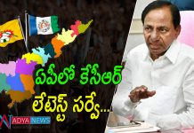 KCR Latest Survey Reports on Andhra Pradesh 2019 Assembly Elections