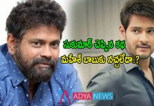 Mahesh babu, sukumar movie canceled