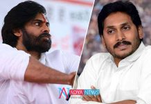 YS Jagan in Pulivendula and Pawan Kalyan in Bhimavaram