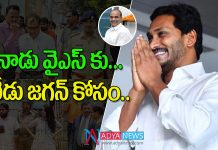 Senior IAS and IPS Officers are Interested to Work with AP CM YS Jagan