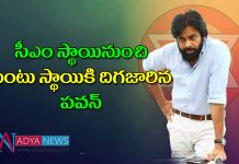 Ap assembly election results2019 : Pawan kalyan lost in gajuwaka and bhimavaram in ap assembly