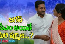 YS Jagan Planning to Give Key Role to YS Sharmila in Party