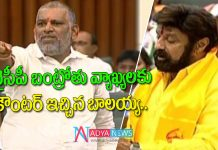 TDP MLA Balakrishna counter to YSRCP MLA Chevireddy Bhashakar Reddy Banthrothu Comments