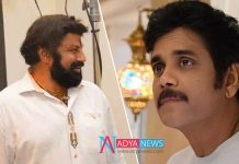 Balakrishna Vs Nagarjuna Clash at Box Office for Sankranthi