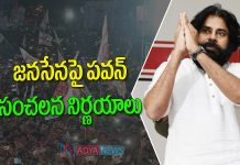 JanaSena Chief Pawan Kalyan Political Strategy for Elections 2024