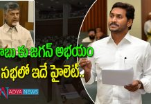 CM YS Jagan sentational comments in chandra babu in assembly sessions