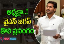 CM YS Jagan satirical comments on chandrababunaidu in assembly sessions