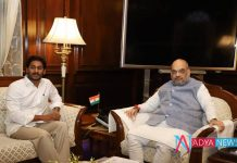 AP CM YS Jagan mohan reddy meet to Home Minister Amith Shaa