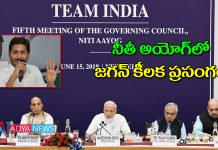 Andhra Pradesh CM Jagan to attend first Niti Aayog meeting