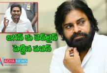 Janasena Chief Pawan Kalyan instreting comments on ys jagan governement