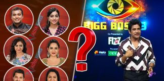 Bigg Boss Telugu Season 3 : Who Will Out From House in This Week