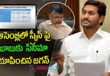AP CM YS Jagan Shock to Chandrababu Over Power Purchase Agreements in Assembly