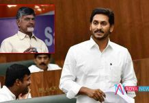 AP Budget 2019 Sessions : war of word between cm ys jagan and chandrababu in assembly on seats allotment