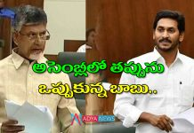 War of words between chandrababu and cm ys jagan on Lingamaneni house in assembly