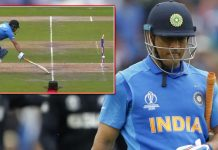 Cricket fan dies after MS Dhoni gets out