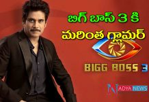 Bigg Boss Telugu 3: Two Tollywood heroines Wild Card Entry in Bigg Boss House