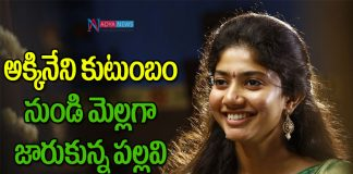 Actress Sai Pallavi Effect on Akkineni Akhil