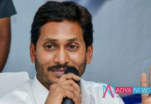 AP CM reviews navaratnala scemes