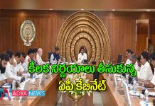 AP Cabinate approved several key decisions