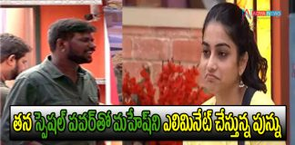 Punarnavi or Mahesh Who is Going To be Elimineted In This week