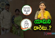 Yamini Sadineni Political Strategy
