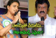 Roja About Balakrishna MOvie