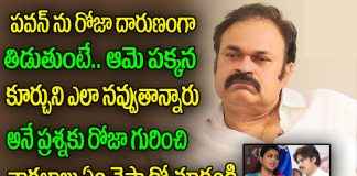 nagendra babu commented roja on the pawan kalyan issue