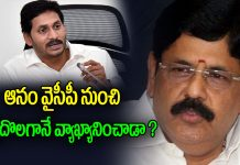 Anam Ramanarayana Reddy Comments On YS Jagan