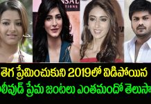 Tollywood Love Breakups and Divorces in 2019