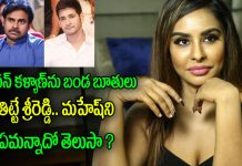 sri reddy sensational comments on mahesh babu