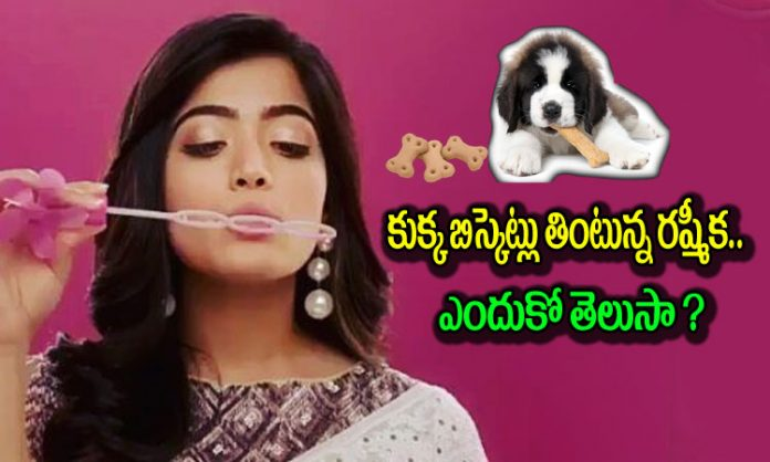 Rashmika Mandanna eats dog biscuits