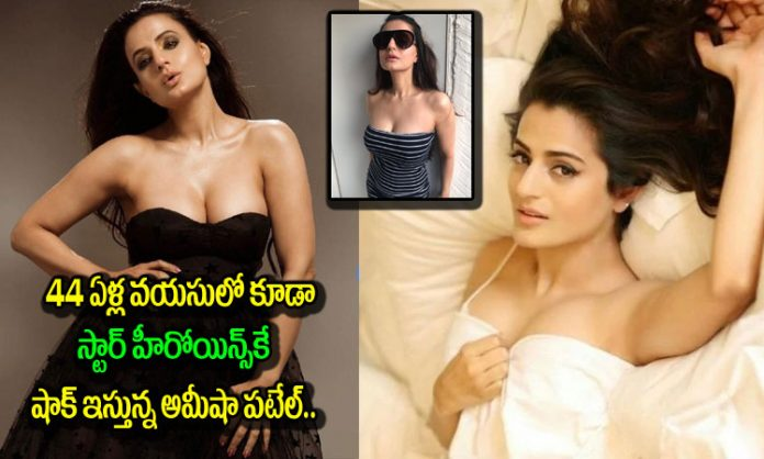 actress ameesha patel stunning photoshoot