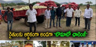 Tomato Challenge Helps Farmers Financially